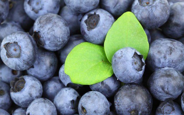 Filozofia zdrowia – czyli o odżywianiu inaczej